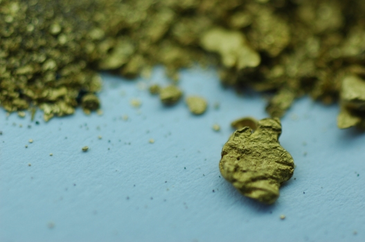 Gold dust from diamond-bearing gravels in the Jequitinhonha river (MG - Brazil)