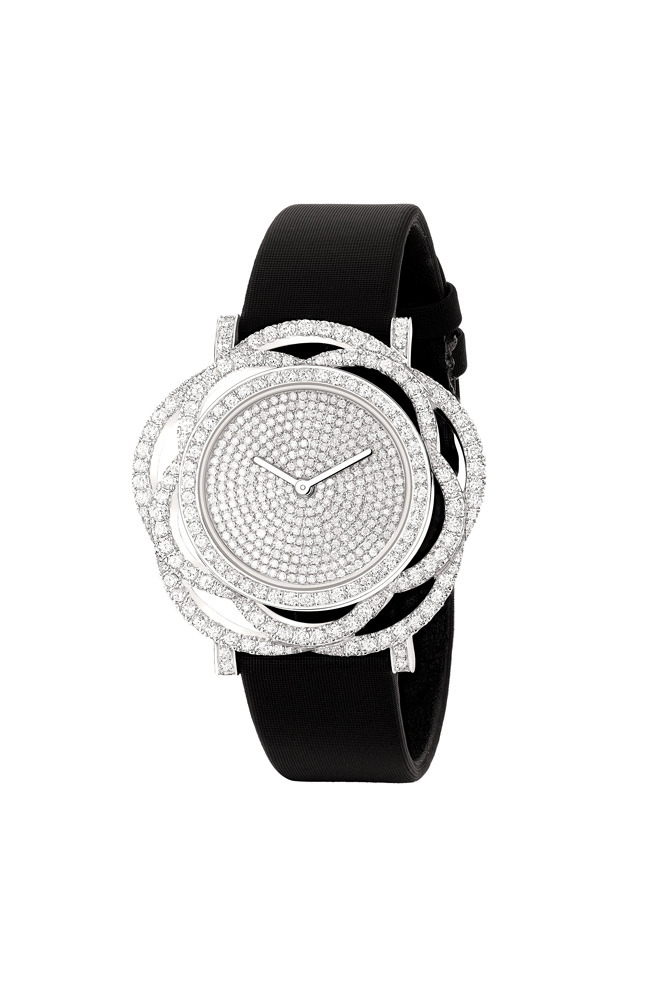 Camelia watch,  white gold and diamonds