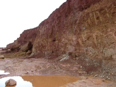 The alluvial deposit being mined