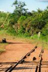 Congo fev2013 20130203_155339