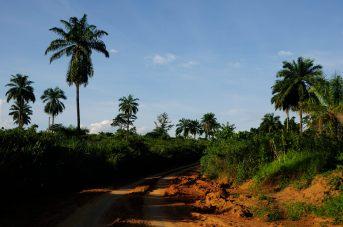 Congo fev2013 20130203_162145