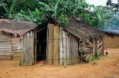 Congo fev2013 20130204_062755