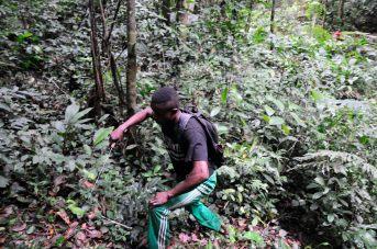 Congo fev2013 20130204_090147
