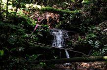 Congo fev2013 20130204_131745