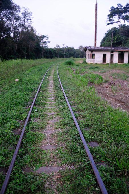 Congo fev2013 20130204_170834