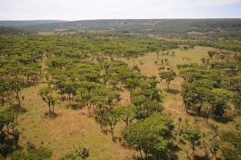 Angola 2009Mai10a22 475