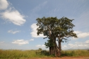 Angola 2009Mai10a22 579
