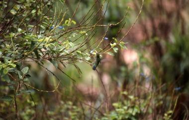 Brasil Diamantina Andarai Lençois 2004 03 038