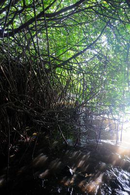 Negombo - Amagi Lagoon