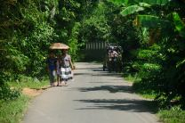 On the road from the Handunugoda Tea Estate to Galle